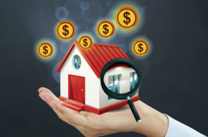 difference between home appraisal and home inspection